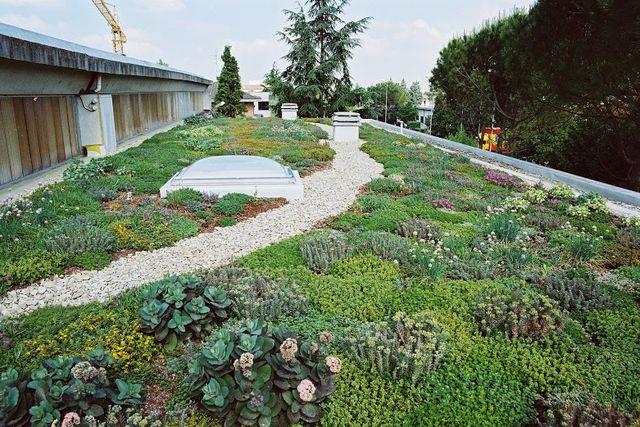 Terase verzi si natura mai aproape de dvs. in oras