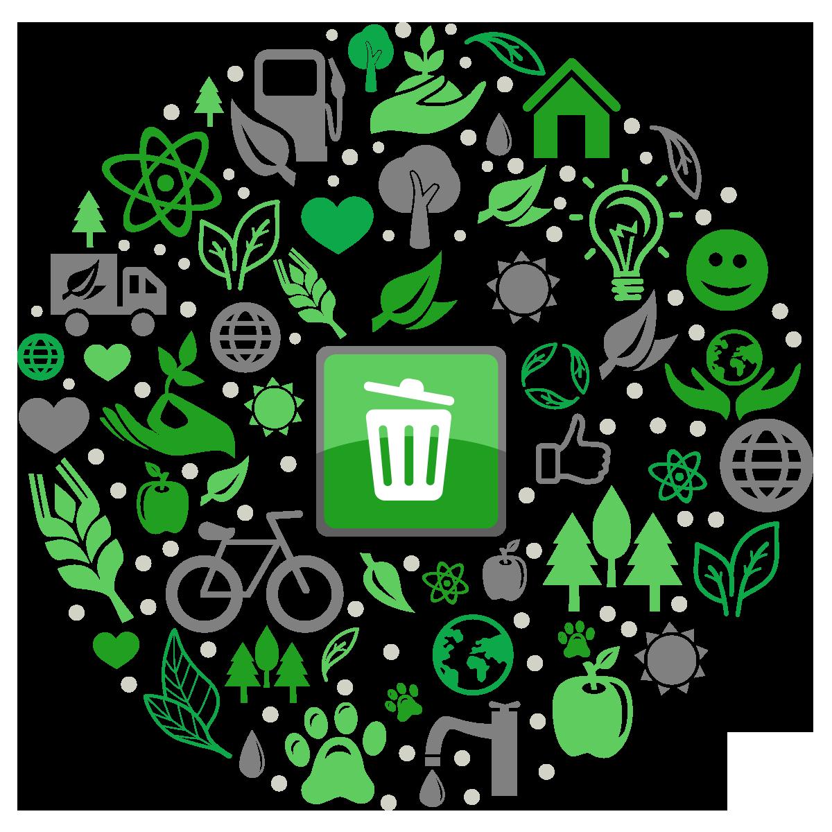 Reciclare deseuri Ploiesti – pentru a economisi energie si a salva pomii